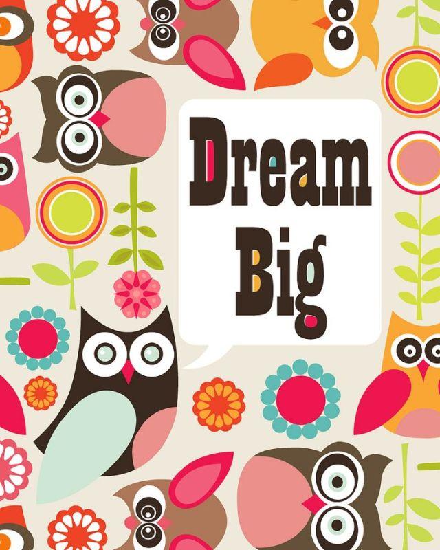 dream-big-owl